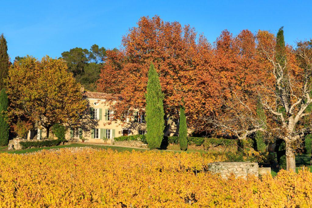Vin rosé bio Provence
